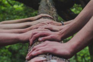 Bursary scholarship hands log nature