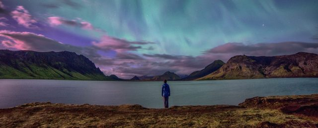 forest-landscape-hiking-mountains-night-northern-lights